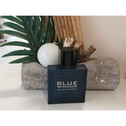 eau de toilette homme blue window